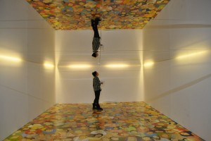 Special Effects Ceiling Mirrors - Liverpool