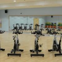 Gymnasium Mirrors