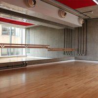 Image 18 Dance Mirror & Barre - Multi Level
